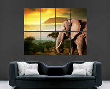 ELEPHANT POSTER AFRICA MOUNTAIN SAFARI SUN PRINT GIANT WALL ART IMAGE HUGE