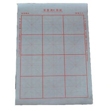 10pcs Magical Chinese Reusable Calligraphy Practice Cloth Papers