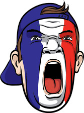 "France Football Fan Face Flag Soccer Car Bumper Sticker Decal 4"" x 5"""