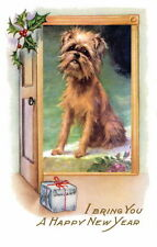 Vintg New Year~Brussels Griffon Dog Dogs in Doorway~Gift~Holly~NEW Lg Note Cards