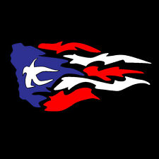 PUERTO RICO CAR DECAL STICKER FIRE with PUERTO RICAN FLAG #9