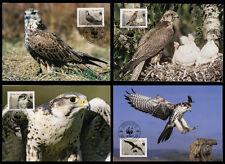 Kirgisien WWF Maximumkarten Nr. 579-82 MK  (3920650579820009)