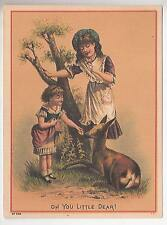 Old Trade Card Dowst's Pure Cider Vinegar College Of Pharmacy kattenhorn Cigars