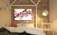 443 X LARGE CANVAS 18''x32'' WALL ART CHERRY BLOSSOM FLOWERS TREE PRINT PICTURE