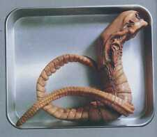 "24""Alien Chest Burster Sci-Fi Thriller Movies Vinyl Model Kit 1/1"