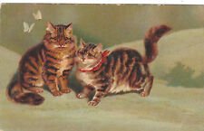 VERY RARE 2 Cats with butterflies old Antique original postcard