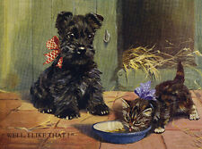 SCOTTISH TERRIER CHARMING SCOTTIE WATCHES KITTEN  DOG GREETINGS NOTE CARD