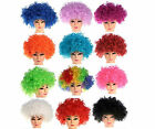 Curly Afro Disco Clown Style Wigs Fancy Dress Funky Mens/Ladies/Kids Costume UK