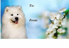 Samoyed Dog Self Adhesive Gift Labels design No. 2. by Starprint