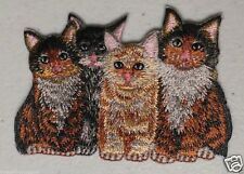 """(D37) 4 CATS / KITTENS 2"""" x 3"""" iron on patch applique Kitty Cat"""