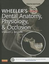 Wheeler's Dental Anatomy, Physiology and Occlusion International Edition