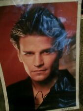 David boreanaz hand signed photo very rare limited edition