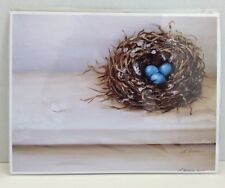 Robins Nest with Eggs and Feather Fine Art Giclee Print LARA HARRIS Bird 8x10
