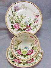 PARAGON DUBARRY FIELD FLORAL PEACH RIM TRIO TEA CUP AND SAUCER