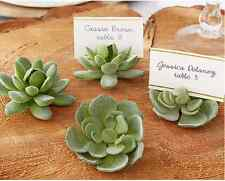 Succulent Place Card Holder Wedding table decoration 20pcs Free Shipping
