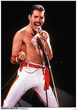 "Freddie Mercury Queen - COLOR Retro Poster A2 Size 42cm x 59.4cm (16.5"" x 23.5"")"