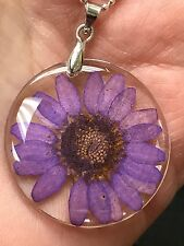 "Flower Daisy Purple Real in Clear Resin Circle Charm Tibetan Silver 18"" Necklace"