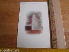 1900-1908 Yellowstone Park ORIGINAL Postcard VINTAGE Old Faithful color Haynes