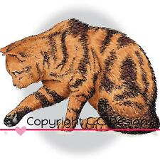 NEW doveart  CC DESIGNS cling Rubber Stamp CURIOUS KITTY CAT free us ship