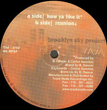 BRETT DANCER & CARLOS SANCHEZ - Brooklyn Sky Project - 1999 Track Mode - TM-010