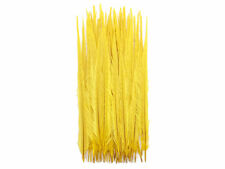 """Pheasant Feathers, 20-22"""" Yellow Bleached andDRingneck Tail Feathers - 50 Pieces"""