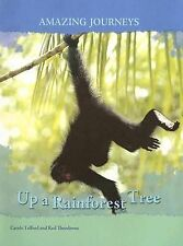 Up a Rainforest Tree (Amazing Journeys)-ExLibrary