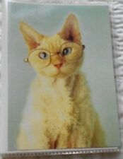 "New Cat In Eyeglasses Adorable Kitten Photo Album 4"" x 6"" Holds 48 Photos"