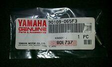 NOS Yamaha Brake Caliper Frame Bolt 90109-065F3 YZ85 TTR250 TTR125 WR200 FJR1300