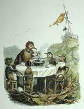 LA FAMILLE OISEAU OISILLONS gravure originale de Grandville aquarellee 1842