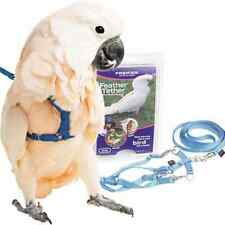 Premier Feather Tether Bird Harness and Leash MEDIUM GREEN NEW