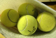 15 Good Used Tennis Balls Use for Doggy Chews, etc  Free Priority Mail shipping!