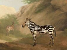 PAINTING ANIMAL JACQUES LAURENT AGASSE ZEBRA PAIR ART PRINT LAH443A