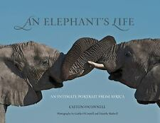 An Elephant's Life: An Intimate Portrait from Africa by O'Connell, Caitlin