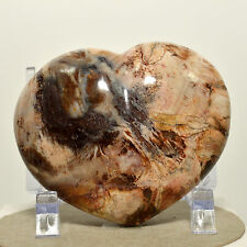 """2.75"""" Natural PETRIFIED WOOD HEART Polished Fossil Agate Crystal from Madagascar"""
