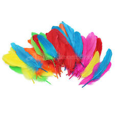 72 Pcs 5-8 inches Mixed Colors Goose Feathers Decoration, Craft, Hats 12-20 cm