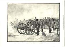 1893 Artiglieria Reale cavallo che spara OMAGGIO apertura IMPERIAL Institute