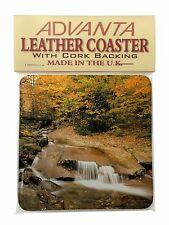 Autumn Waterfall Single Leather Photo Coaster Animal Breed Gift, W-4SC