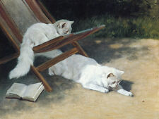 CAT PRINT PERSIAN CATS IN DECKCHAIR PLAY WITH LADYBIRD