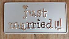 US CAR USA AUTO Hochzeit Kennzeichen Just Married Nummernschild Autoschmuck 2