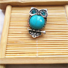 Turquoise Jewelry owl Snaps Chunk Charm Button FIT For Noosa Leather Bracelets