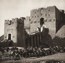 1925 Vintage ALEPPO Camel Gate Citadel Castle Landscape ISRAEL Palestine Art