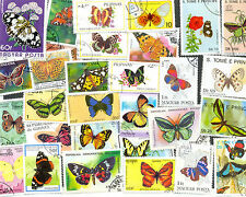Butterflies & Moths 100 all different collection-lovely colourful lot