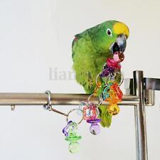 Coloré Jouet Suspendue pour oiseau perroquet perruche chaîne acrylique décor