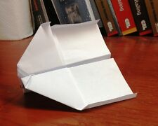 Wicked Awesome Paper Airplane - Handmade - Ships Fully Assembled