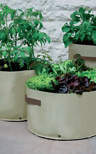 3 Haxnicks Patio Planters Growbags Grow Vegetables green