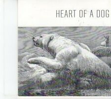 (DQ73) Heart of a Dog, With The Head of a Beast - 2012 DJ CD