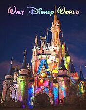 DISNEY Cinderella CASTLE - COLORS - Travel Souvenir Fridge Magnet