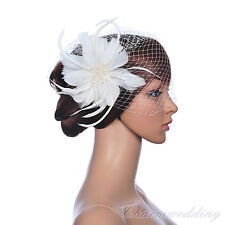 White Wedding Birdcage Veil Fan Bridal Fascinator Netting with Feather Clip