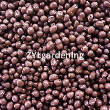 1 Gallon 4 Liter lb Expanded Clay Aggregate Pellets Hydroponic Growing Media
