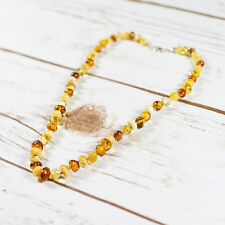 100% Genuine Natural Baltic Amber Neckalce Choker Multicolor Silver Clasp Brown
